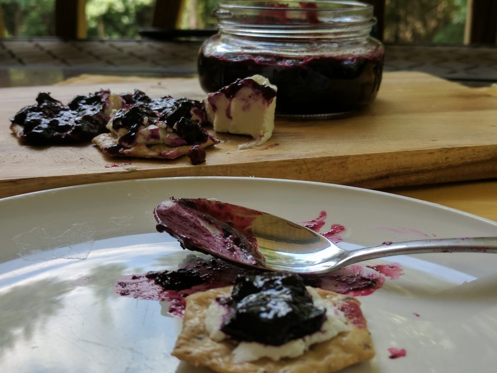 My vanilla blueberry jam with goat cheese and crackers