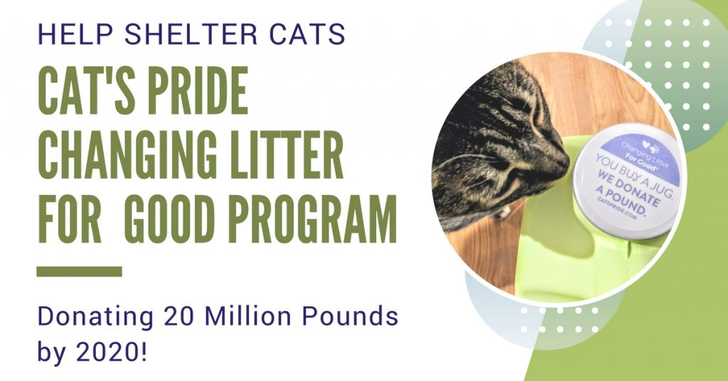 Cat's Pride Litter for Good Program helps change the lives of shelter cats