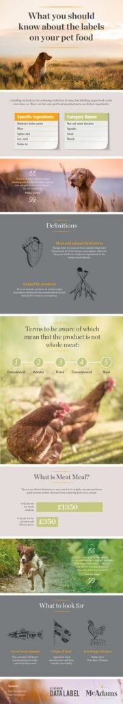 What is in your pets food? What exactly is the difference between animal by-product, meat meals, and whole meat?